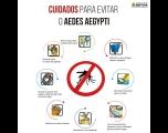 Ações constantes no combate ao mosquito da dengue